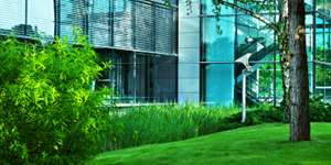 Commercial landscaping and grounds maintenance